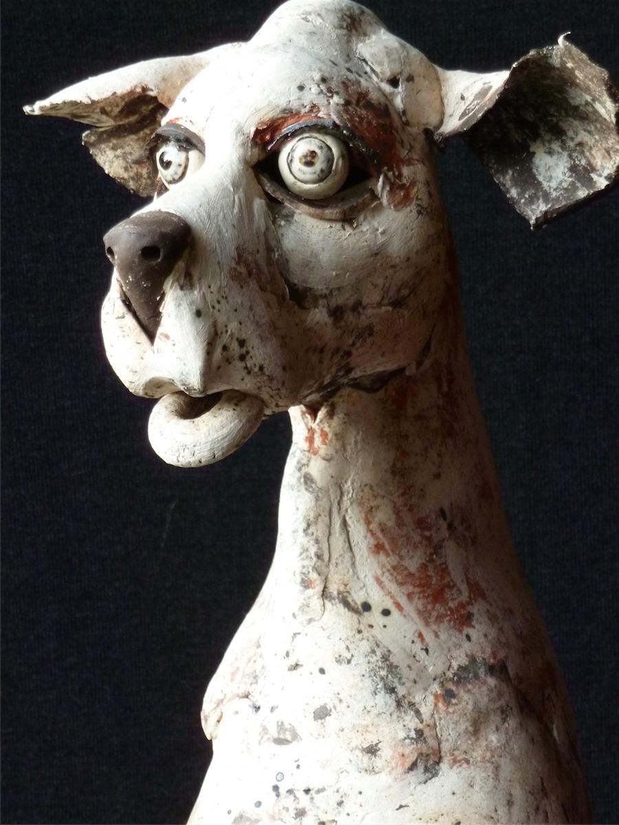Paul De Vos zittende hond